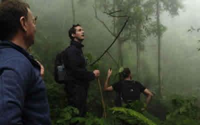 chimps tours rwanda